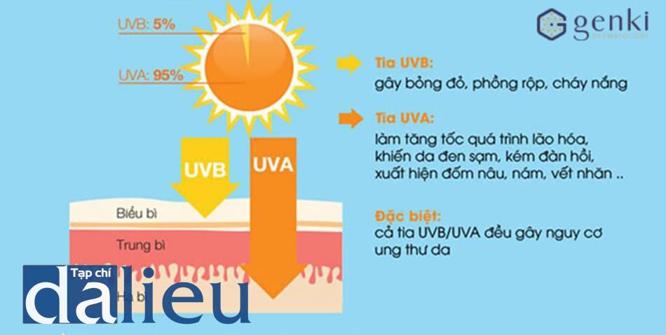 Tia UV gây nám da