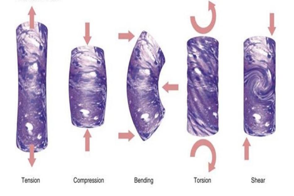 Hình 2.10 Các áp lực tác động lên filler