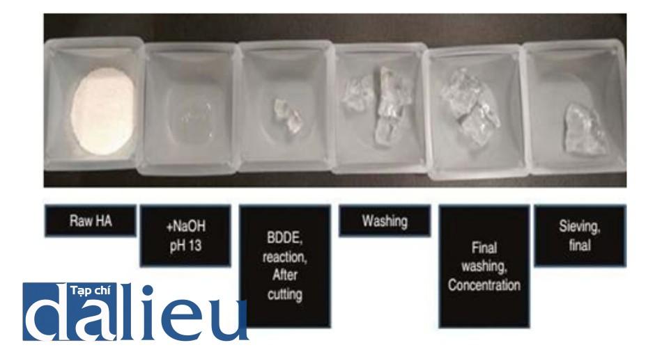 Hình 2.5 Chất filler HA thay đổi trong quá trình sản xuất