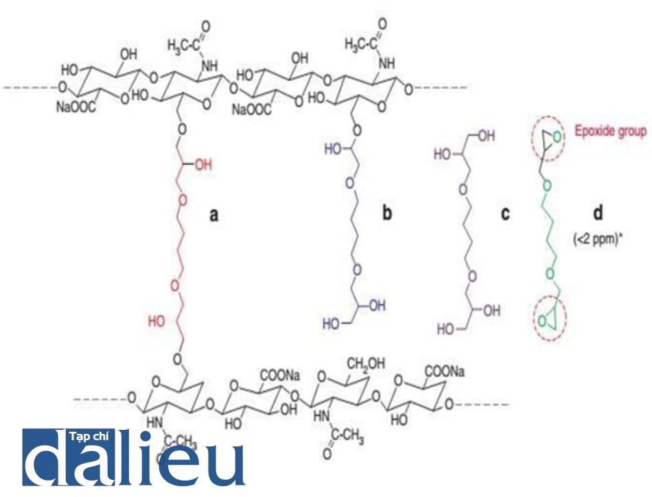 Hình 3.1 Các thể của 1,4 butanediol diglycidyl ether. (a) Nhánh liên kết ngang. (b) Nhánh treo. (c) Phân tử tự do. (d) Thể tự nhiên: Các kiểm nhiệm chất lượng chỉ phát hiện được thể này (<2 ppm)