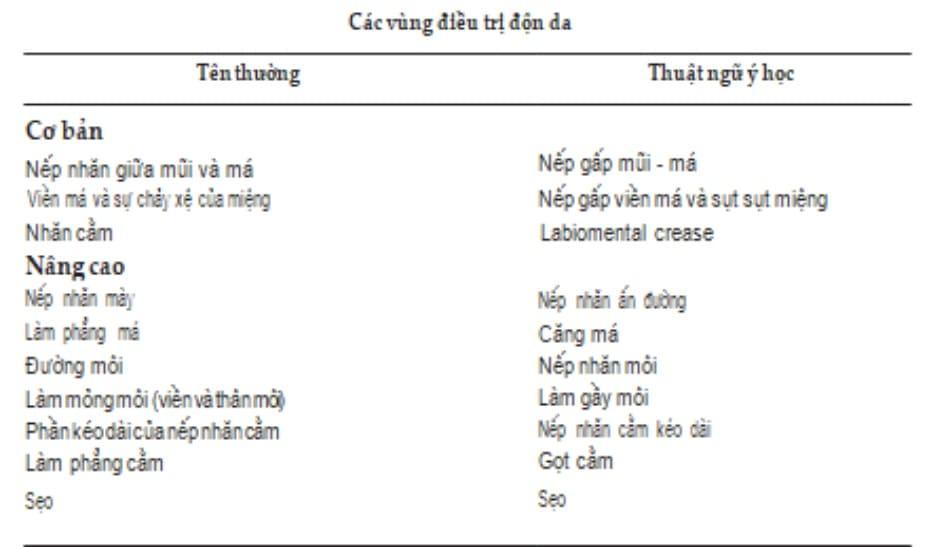 Bảng 1 Các vùng điều trị độn da cơ bản và nâng cao