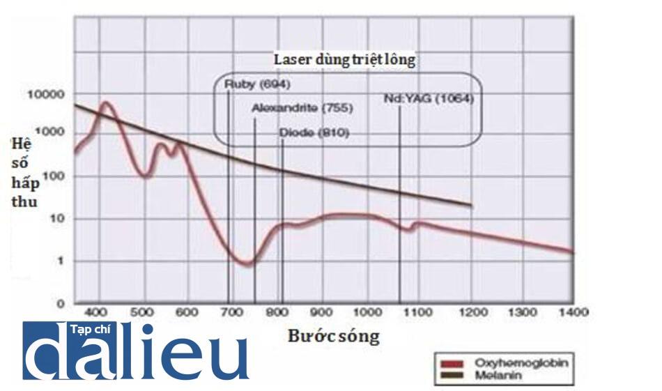 HÌNH 1 Biểu đồ hấp thu của mô nhóm mang màu và lasers sử dụng thông thường để triệt lông.