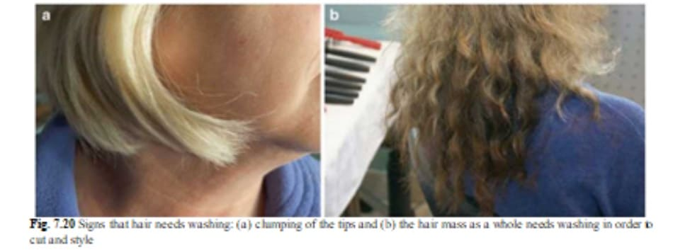 Fig. 7.20 Signs that hair needs washing: (a) clumping of the tips and (b) the hair mass as a whole needs washing in order to cut and style