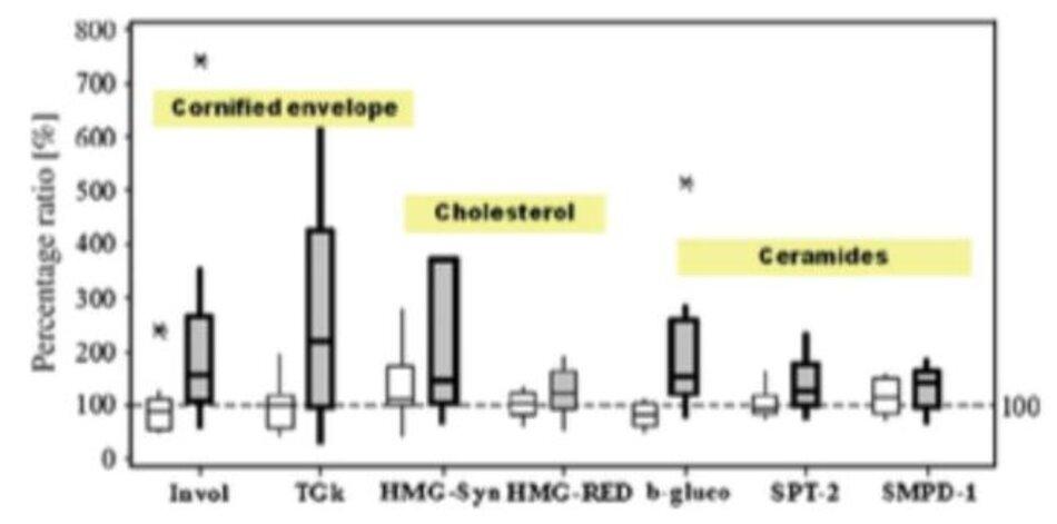 Hình 2: Điều trị lâu dài bằng kem hydrocacbon làm suy giảm hàng rào (hộp màu xám)