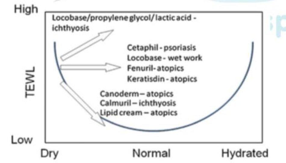 Hình 3: Ảnh hưởng của kem dưỡng ẩm đối với sự mất nước qua biểu bì (TEWL)